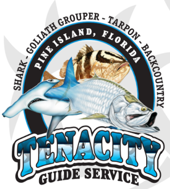 tenacity guide service