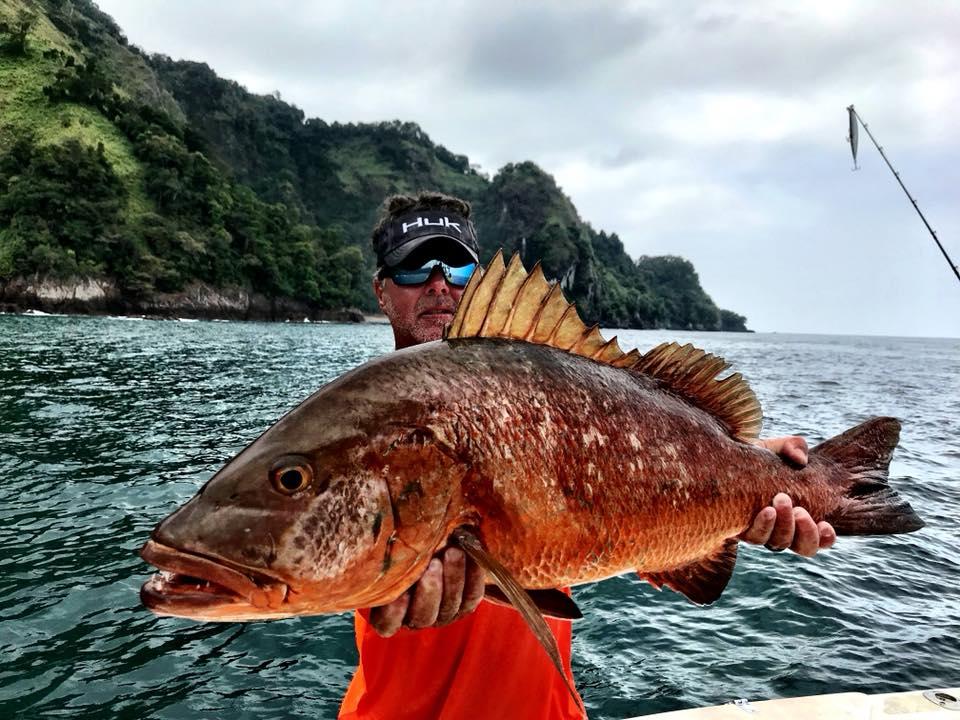 cubera panama fishing