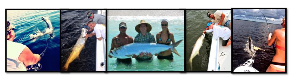 """Florida tarpon fishing"""